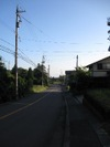 Walking3