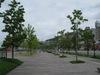 Nagasaki201105211